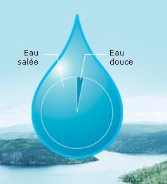 Rencontre eau douce eau salee