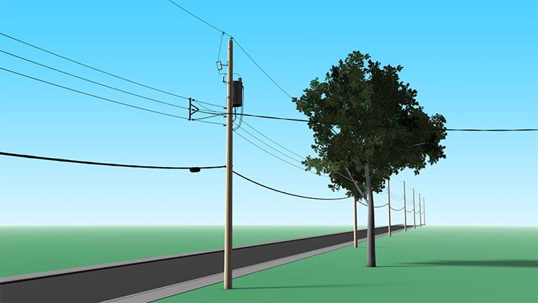 Hazards: Tree too close to a medium-voltage line